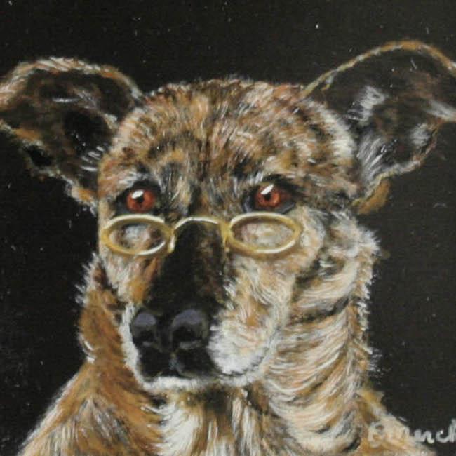 Docteur chien